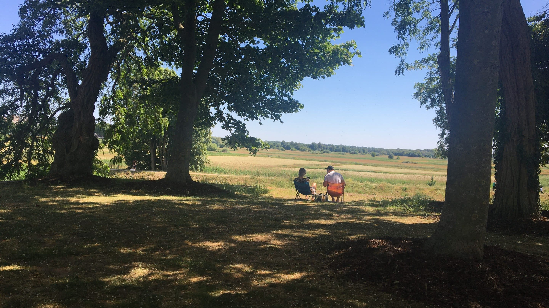picknicken den Bosch