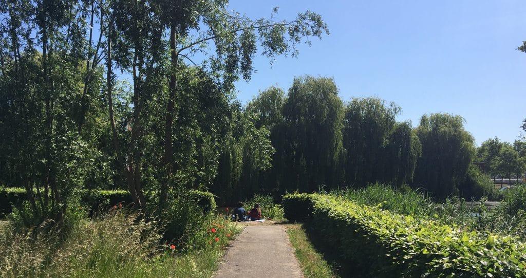picknicken westerpark den Bosch